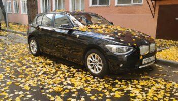 Дилеры в России активно скупают автомобили с пробегом для собственных складов